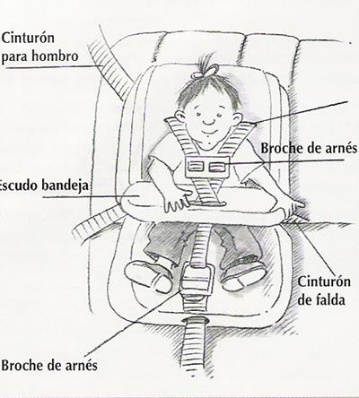 Asientos convertibles niños 1 a 2 años